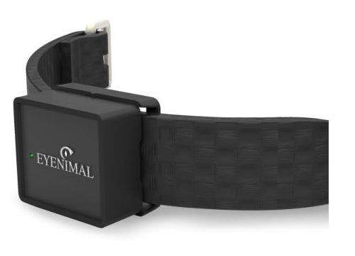eyenimal iopp tracker collier gps connect pour chiens et chats. Black Bedroom Furniture Sets. Home Design Ideas
